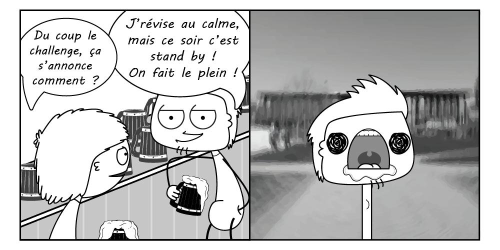 Planche 5
